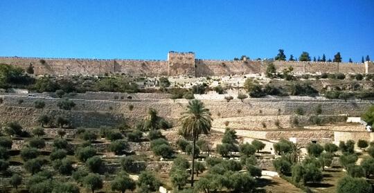 Teemme myös päivän matkan Jerusalemiin. Pääsiäisviikolla!