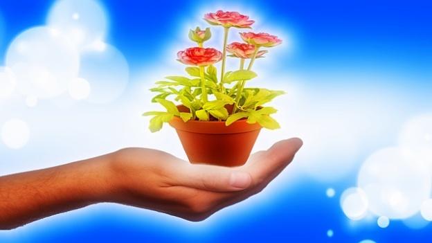 pixabay_bykst_hand-1106917_640